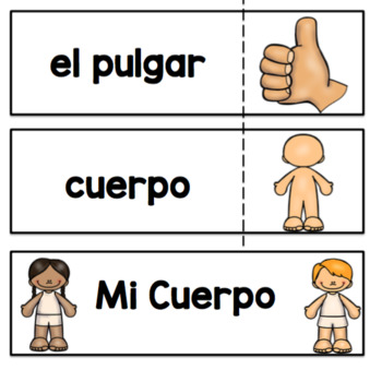 Spanish Parts of the Body