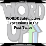 Spanish- Past Tense Subjunctive Statements Video Bundle (D
