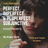 Spanish Present   Perfect   Imperfect and Pluperfect Subjunctive PowerPoints