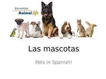 Spanish Pets / Las Mascotas