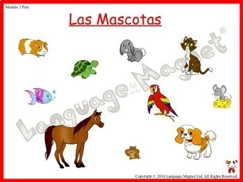 Spanish Pets Presentation with Display Cards