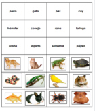 Spanish Pets Word and Picture Memory Game