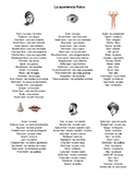 Spanish • Physical Appearance Descriptions Vocabulary for