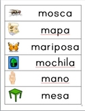 Spanish Picture/Word Cards