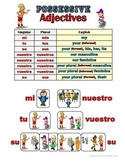 Spanish Possessive Adjectives Grammar Notes