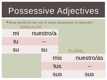 Spanish Possessive Adjectives and Comparisons PowerPoint