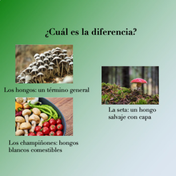 """Spanish Powerpoint for the short story """"La Micología"""" by Quim Monzó"""