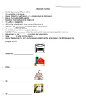 "Spanish Preterite Verb ""Ir"" Worksheet"
