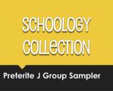 Spanish Preterite J Group Schoology Collection Sampler