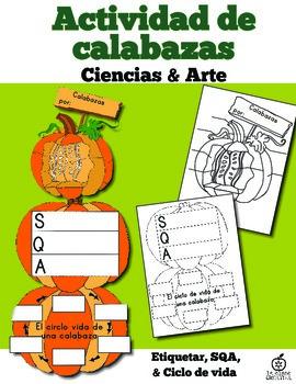 Spanish Pumpkin Life Cycle