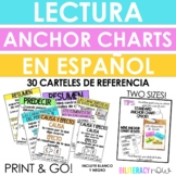 Spanish Reading Anchor Charts