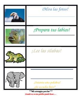 Spanish Reading Strategies-student size