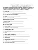 Spanish Realidades 2A Practice WKST subjects nouns, pronou