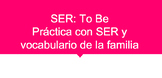 Spanish. SER. Family Vocabulary practice