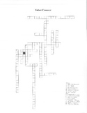 Spanish Saber / Conocer Crossword Puzzle