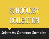 Spanish Saber Vs Conocer Schoology Collection Sampler