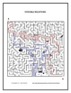 Spanish School Item Maze