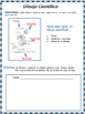 Spanish Scientific Drawing, FREE ONE ACTIVITY from Full Pack