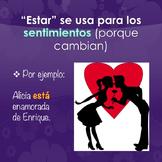 Spanish Ser vs Estar PowerPoint   Printables and Interactive Notebook Activity