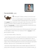 Spanish Short Story Preterite Imperfect Interpretive Reading/ Writing Sub Plans