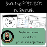 Spanish, Showing Possession Using Short Form Possessive Adjectives / Practice