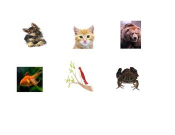 Spanish Simon Says With Animals Activity/Game