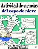 Spanish Snowflake Activity