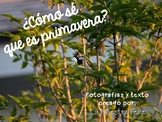 Spanish Speaking  Spring/¿Cómo sé que es primavera?