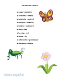 Spanish Spelling Worksheet Insectos Insects 17pages of fun Crossword Noodle Sort