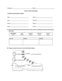 Spanish Stem-Change Verb Worksheet (Present Tense)