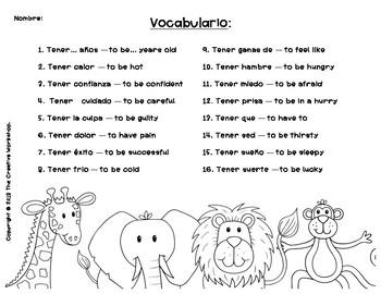 "Spanish ""Tener"" Expressions"