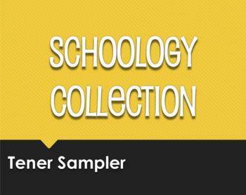 Spanish Tener Schoology Collection Sampler