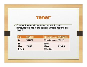 Spanish Tener Notes