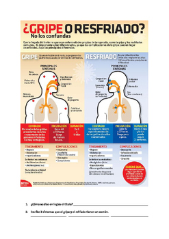 Spanish Uds. Command literacy activity with authentic flu  infographic