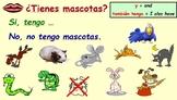 Spanish Unit 1 Lesson 5 Pets and colours