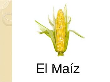 Spanish Vegetable Powerpoint Activities
