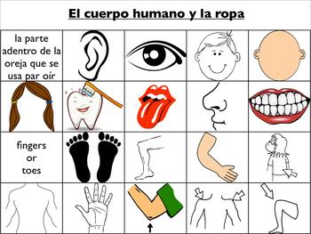 Spanish Vocabulary : Body Parts and Clothing