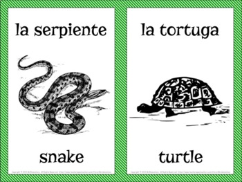 Spanish Animals Vocabulary Flashcards and Word Wall
