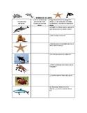 Speech Therapy Spanish Vocab w/ Questions: Ocean Animals/Animales del Océano