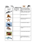 Speech Therapy Spanish Vocab w/ Questions: Ocean Animals/A