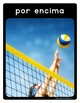 Spanish Volleyball Vocabulary Posters & Flashcards with Real Photos