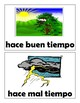 Spanish Weather Phrases Mini Posters