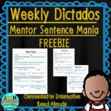 Spanish Weekly Dictado Lesson Plans Unit 1 FREEBIE