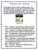 Spanish Weekly Dictado Lesson Plans (Mentor Sentence Mania Unit 5) FREEBIE