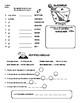 Spanish Word Puzzles with Present Irregular Yo Verbs.  Rom