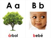 Spanish Word Wall Alphabet Cards - El Alfabeto