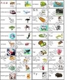 Spanish Word Wall Alphabet With Vocabulary