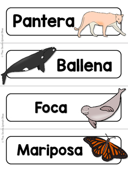 Spanish Word Wall Cards {Animales Americanos} ESPAÑOL