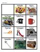 Spanish Word Wall Words- STUVWXYZ