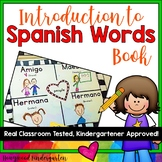 Spanish word book!  Perfect for Cinco de Mayo or with a Spanish story/unit!